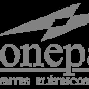 RIONEPAR.COM.BR
